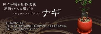 Baidu IME_2013-8-8_22-44-24.jpg